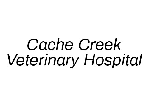 Cache Creek Veterinary Hospital