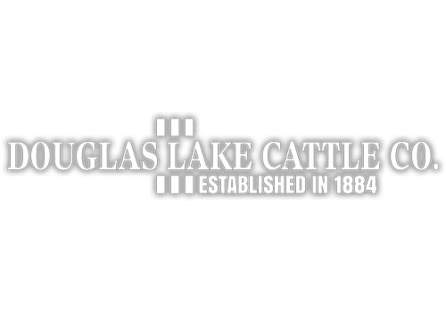 douglas lake cattle