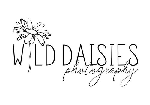 Wild Daisies Photography